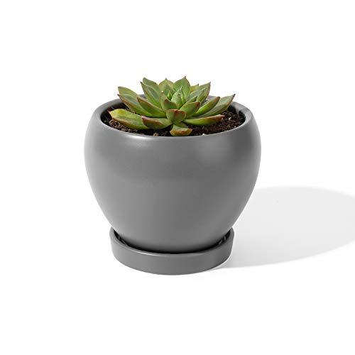 Top 8 übertopf Keramik grau – Übertöpfe