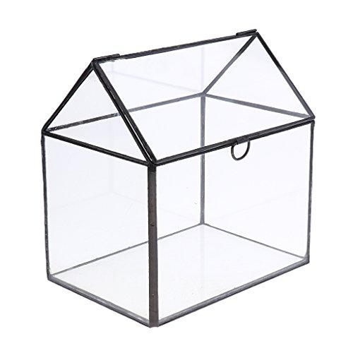 Top 10 Mini Gewächshaus Fensterbank Glas – Blumentöpfe