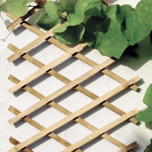 Top 8 Scherengitter Holz Ausziehbar – Rankgitter