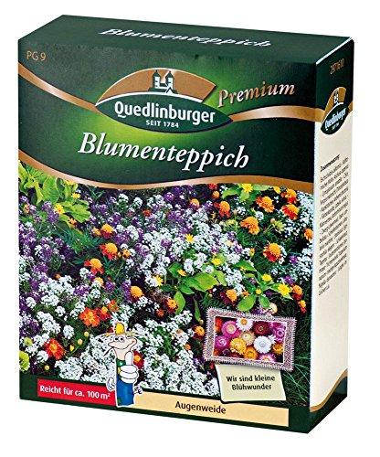 Top 7 Blütenteppich Samen – Blumensamen & -pflanzen